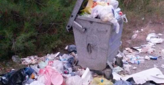 İdemli'de Çöpler Etrafa Saçıldı