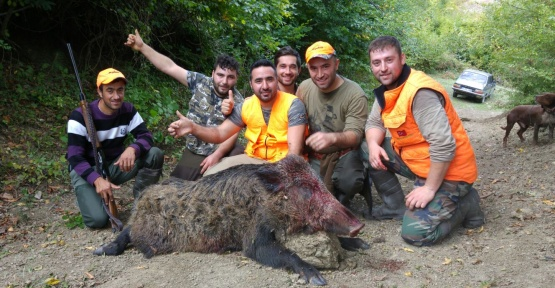 İki Domuz Vurdular