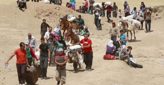 Sinop'taki Suriyeli Sayısı Artıyor