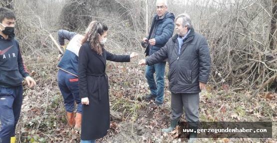 Orman Müdürlüğünden Arıcılığa Destek