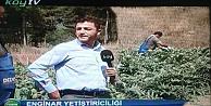 Haydi Köy TV Başına