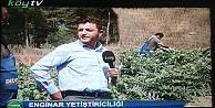 Köy TV Gerze ve Sinop'ta
