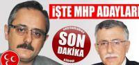 MHP Sinop adayları açıklandı