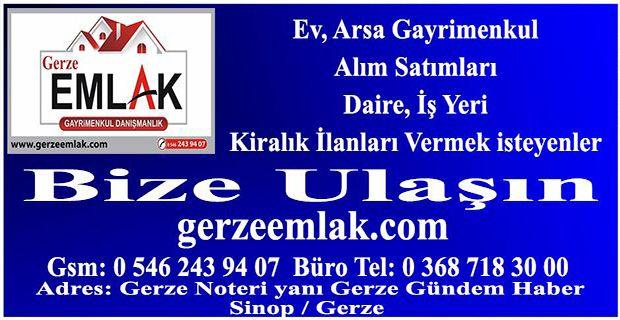 banner381